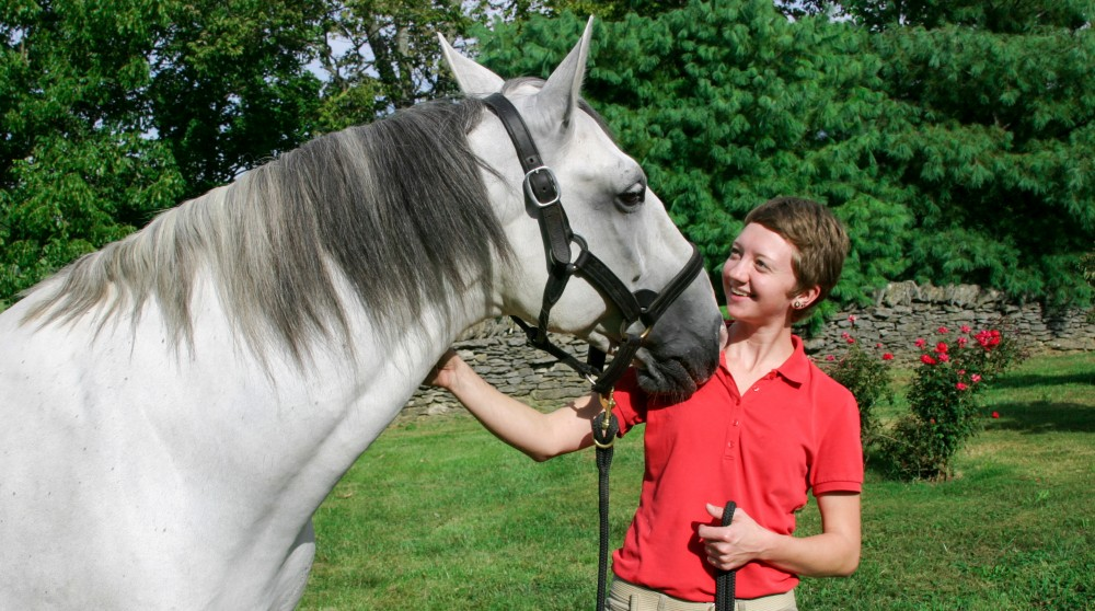 Meet the Equine Therapist